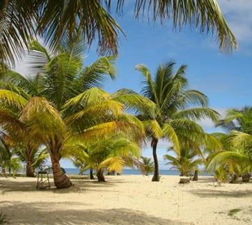placencia beach